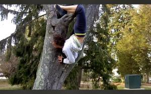 Monkeying around  in Connecticut College's trees